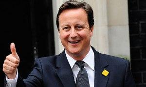 Except...David Cameron is blah.